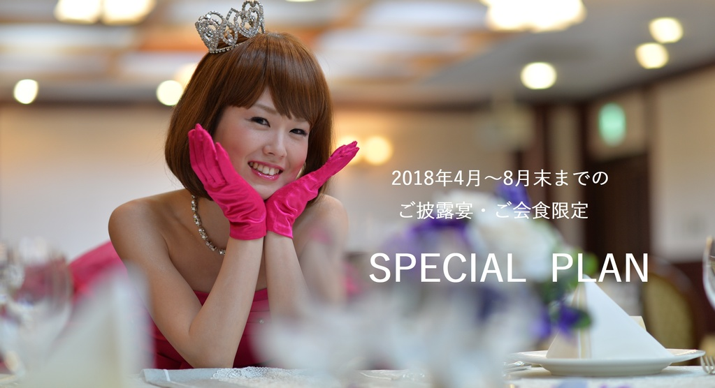 SPECIAL PLAN画像